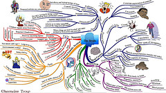 3299003148 e3cf88da32 m  4 Reasons Why Mind Maps Are the Ultimate Creative Tool